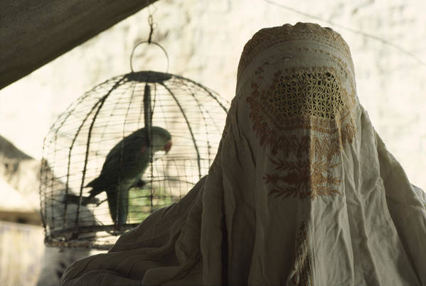 pakistan Print featuring the photograph Close-up Of A Woman And A Parakeet - by James L. Stanfield