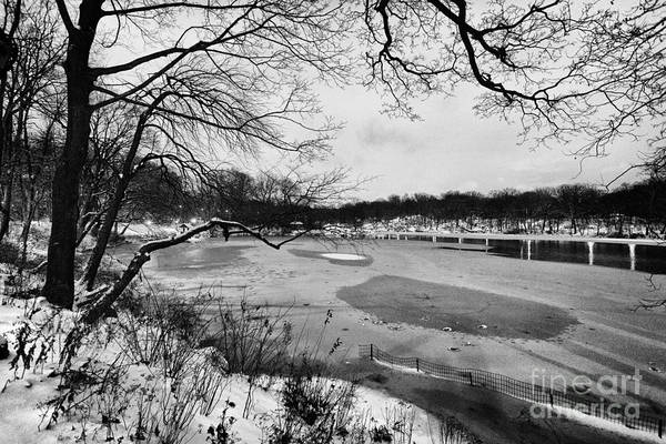 Cold Print featuring the photograph Frozen Central Park At Dusk by John Farnan
