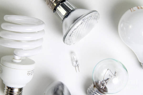 Bulb Print featuring the photograph Light Bulbs by Photo Researchers, Inc.