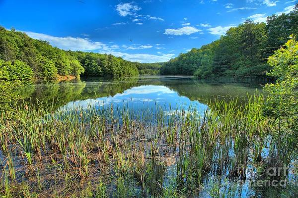 Long Branch Lake Print featuring the photograph Long Branch Marsh by Adam Jewell