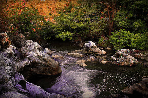 Landscape Print featuring the photograph Mountain River With Rocks by Radoslav Nedelchev
