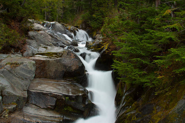 Pacific Northwest Print featuring the photograph Natures Steps by Robert Torkomian