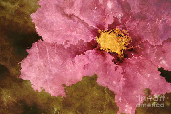 Flower Print featuring the photograph Petaline - Ar01bt04c2 by Variance Collections