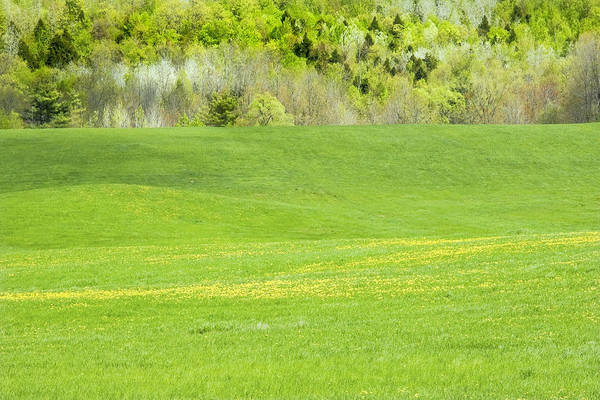 Hay Field Print featuring the photograph Spring Farm Landscape In Maine by Keith Webber Jr