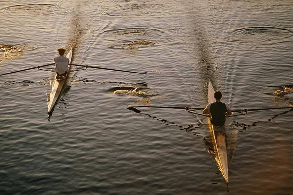 charles River Print featuring the photograph Two Rowers Paddle Down The Charles by Tim Laman
