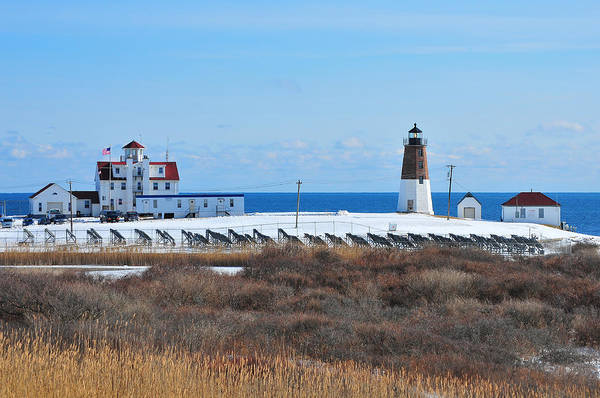 Point Judith Light Print featuring the photograph Point Judith Light by Catherine Reusch Daley