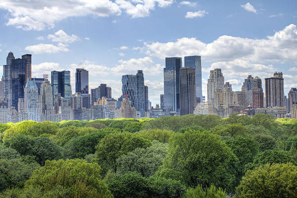 Central Park Print featuring the photograph Central Park South by Ariane Moshayedi