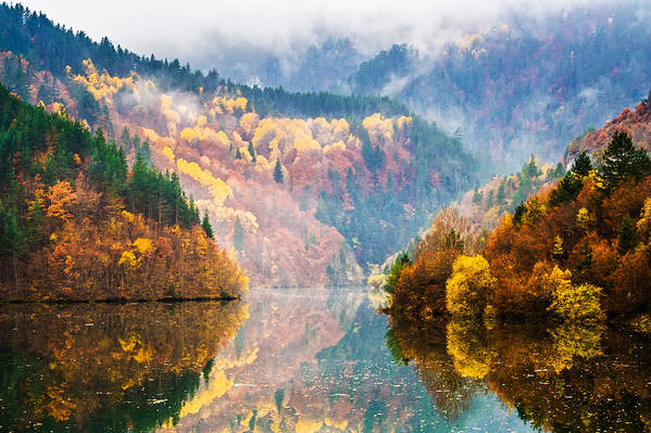 Forest Print featuring the photograph Autumn Lake by Evgeni Dinev