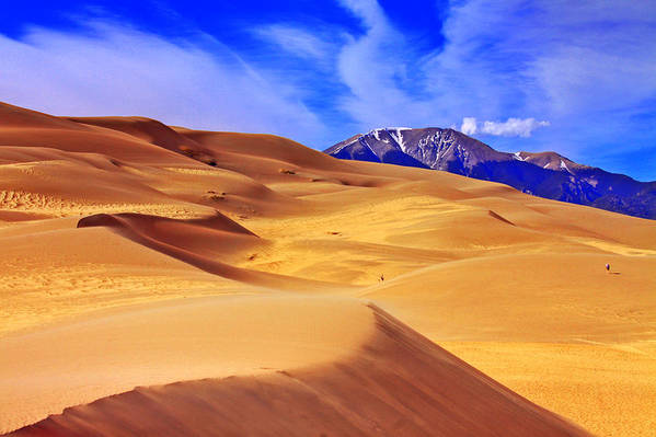 The Dunes Print featuring the photograph Beauty Of The Dunes by Scott Mahon