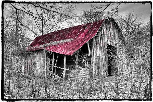 Andrews Print featuring the photograph Big Red by Debra and Dave Vanderlaan