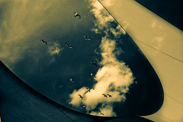 Abstract Print featuring the photograph Canvas Seagulls by Bob Orsillo
