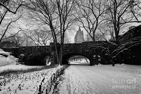 Cold Print featuring the photograph Central Park West And The San Remo Building by John Farnan