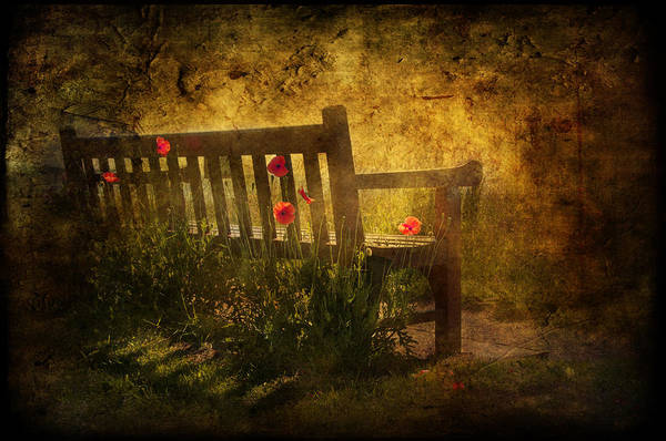 Background Print featuring the digital art Empty Bench And Poppies by Svetlana Sewell