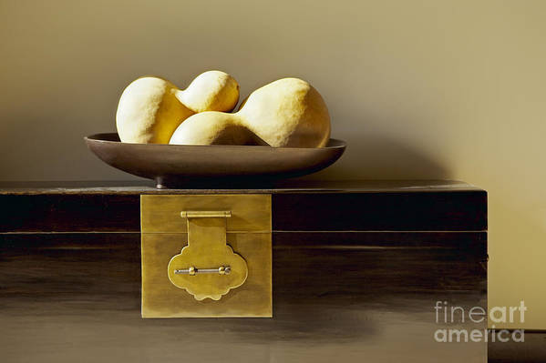 Beige Print featuring the photograph Gourds Still Life I by Kyle Rothenborg - Printscapes