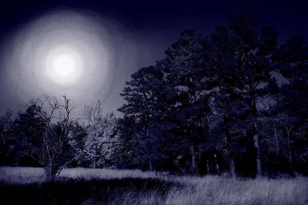 Dream Print featuring the photograph Moon And Dreams by Nina Fosdick