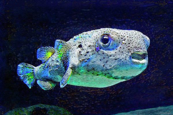 Puffer Fish Print featuring the digital art Puffer Fish by Jane Schnetlage