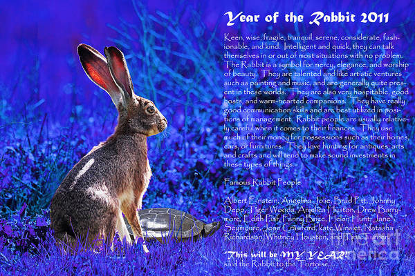 Year Of The Rabbit Print featuring the photograph Year Of The Rabbit 2011 . Blue by Wingsdomain Art and Photography