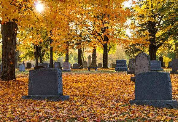 Forest Hill Cemetery Print featuring the photograph Forest Hill Autumn Light by Mary Amerman