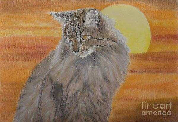 Cat Paintings Print featuring the painting Cat And Sunset by Cybele Chaves