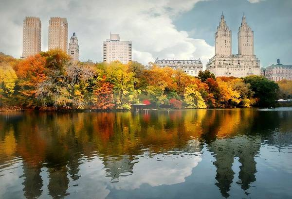 Landscape Print featuring the photograph Central Park #1 by Diana Angstadt