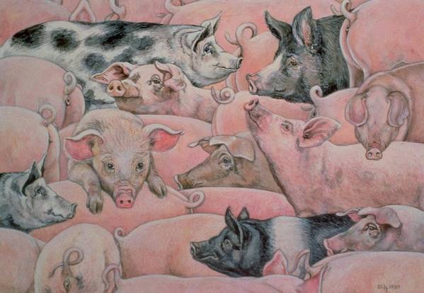Pig Print featuring the painting Pig Spread by Ditz