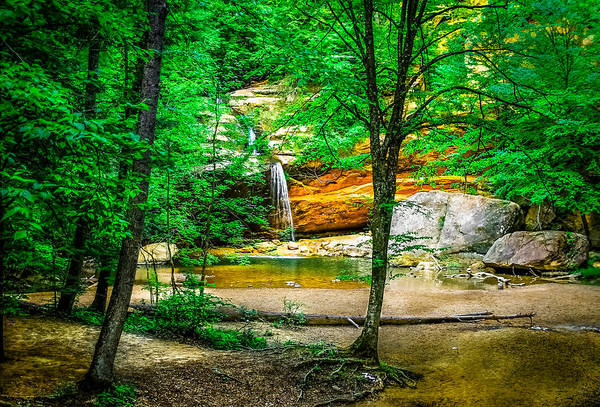 Hocking Hills Print featuring the photograph Tree Roots by Optical Playground By MP Ray