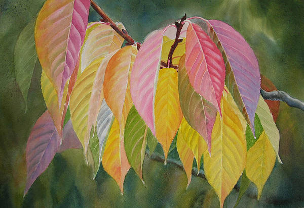 Leaves Print featuring the painting Colorful Fall Leaves by Sharon Freeman