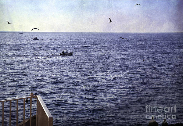 Sea Print featuring the photograph Out To Sea by Madeline Ellis