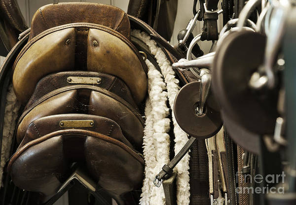 Equipment Print featuring the photograph Tac Room Saddles by John Greim