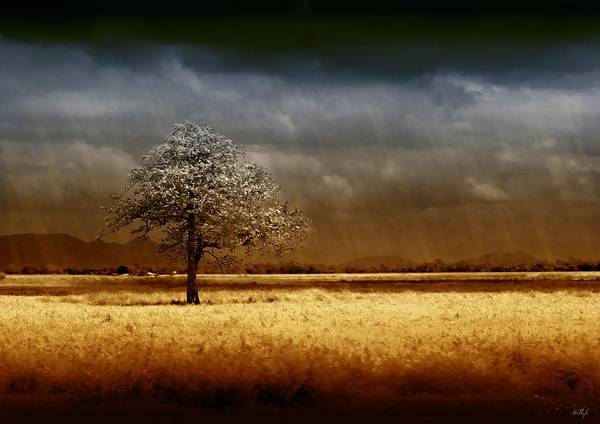Landscapes Print featuring the photograph And The Rains Came by Holly Kempe