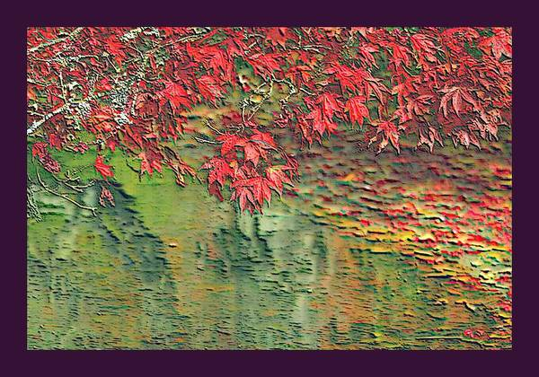 Maple Leaves Red Leaf Float Floating On Water The Creek Stream Creeks Streams Autumn Fall September Oct Sept October Nov December Dec November Rural Country Scene Scenes Scenic Scenery Fresh Water Flowing Watershed Tributary Outdoors Outside Nature Natural Pasture Landscape Pastures Pasturing Pastured Meadow Meadows Violet Border Pond Ponds Lake Lakes Rock Rocks Stone Stones Stoned Algae Plankton Zooplankton Phytoplankton Microscopic Tiny Little Miniscule  Print featuring the photograph Leaves On The Creek 3 With Small Border 3 by L Brown