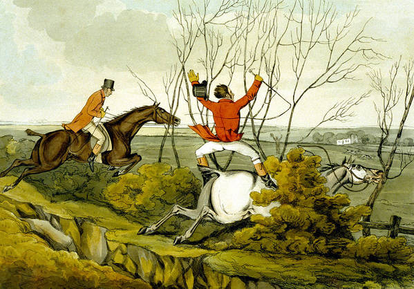 Ditch; Jumping; Grey; Horse; Hunter; Hunting; Rider; Horseback; Unseated; Unhorsed; Falling; Landscape; Accident; Sport; Comical; Humorous Print featuring the painting Plunging Through The Hedge From Qualified Horses And Unqualified Riders by Henry Thomas Alken