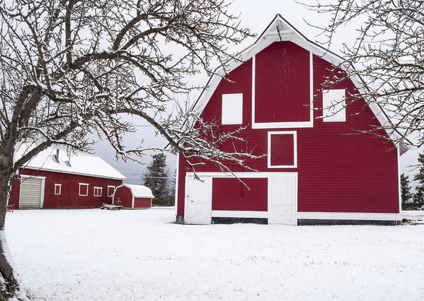 Barn Print featuring the photograph The Red Barn by Fran Riley