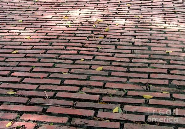 Old Print featuring the photograph Old Red Brick Road by Yali Shi