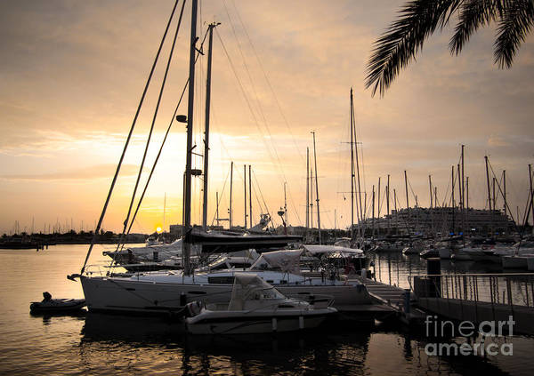 Anchor Print featuring the photograph Yachts At Sunset by Carlos Caetano