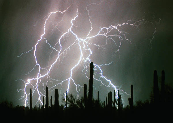 Lightning Print featuring the photograph Striking Photography by James BO Insogna