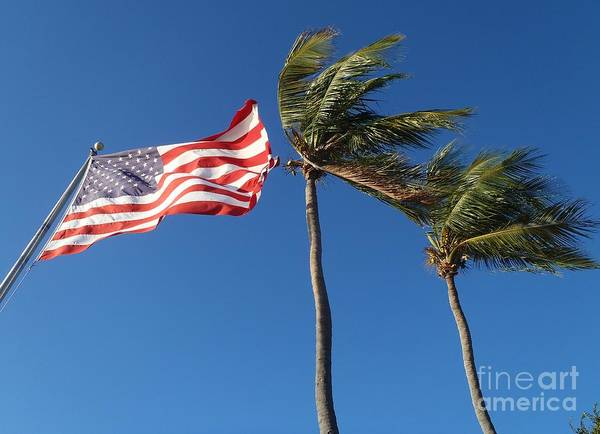Flag Print featuring the photograph Patriot Keys by Carey Chen