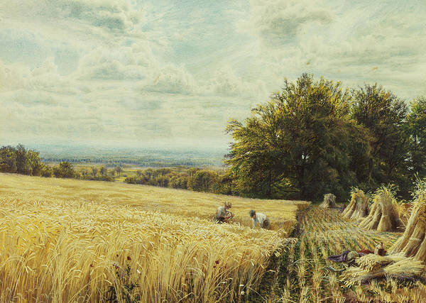 1860s; 1865; Agricultural; Artist British; Artist European; Artwork; Bale; Body Color; Body Colour; British Artist; Day; Edmund Warren George; English Artist; European Artist; Field; Fine Art; George Print featuring the painting The Harvesters by Edmund George Warren