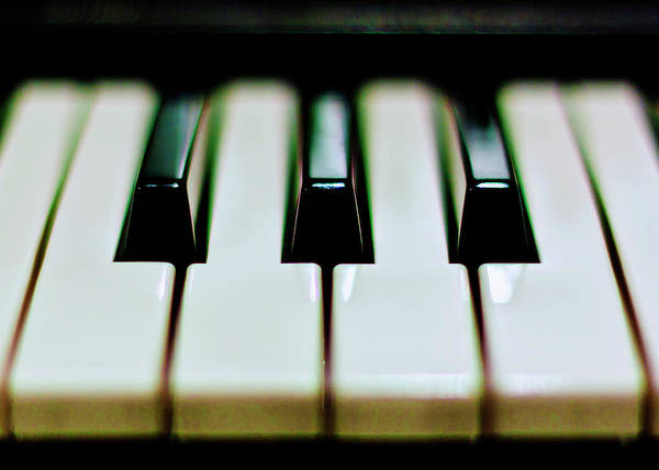 Horizontal Print featuring the photograph Piano Keys by Calvert Byam