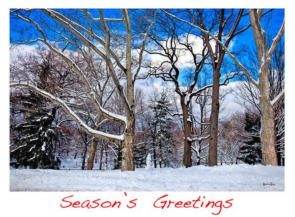 Season's Greetings Print featuring the photograph Season's Greetings by Madeline Ellis