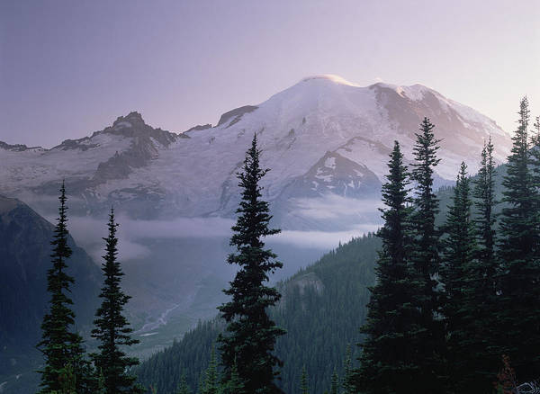 00174583 Print featuring the photograph Mt Rainier As Seen At Sunrise Mt by Tim Fitzharris
