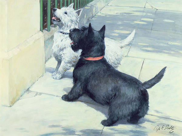 Dog Print featuring the painting Black And White Dogs by Septimus Edwin Scott