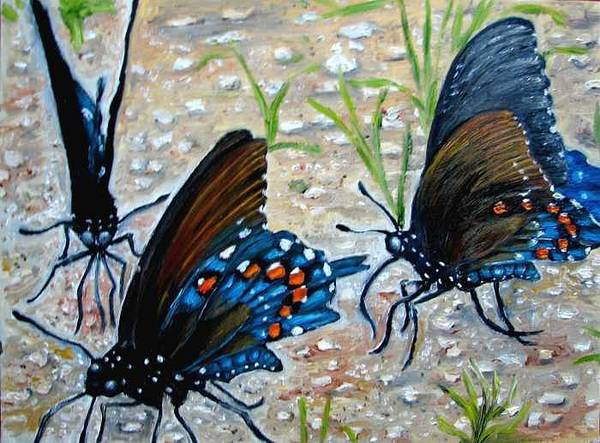 Butterfly Print featuring the painting Butterflies Original Oil Painting by Natalja Picugina