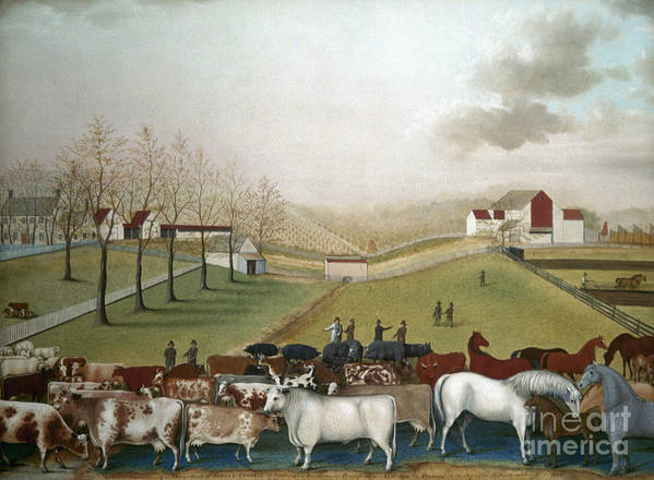 19th Century Print featuring the photograph Hicks: Cornell Farm, 1848 by Granger