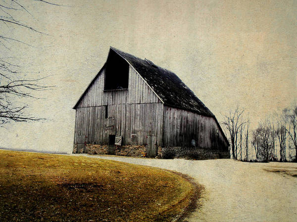 Barn Print featuring the digital art Work Wanted by Julie Hamilton