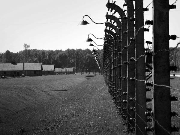 Auschwitz Print featuring the photograph Fence Of Death by Mountain Dreams