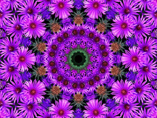 Kaleidoscope Print featuring the photograph Flower Power by Kristie Bonnewell