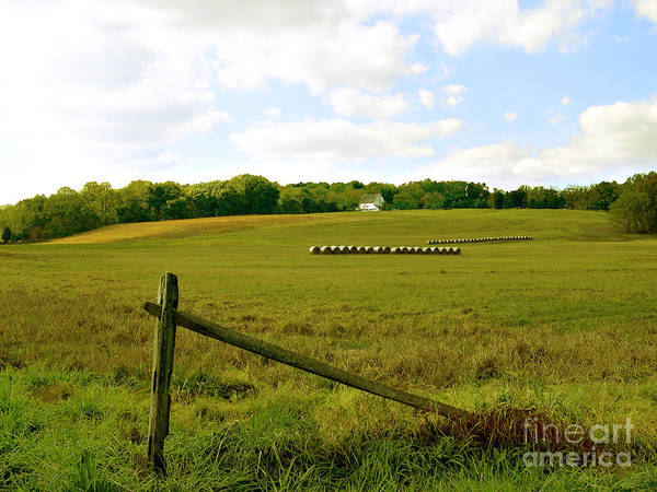 Misty Hills Farm Print featuring the photograph Misty Hills Farm by Addie Hocynec