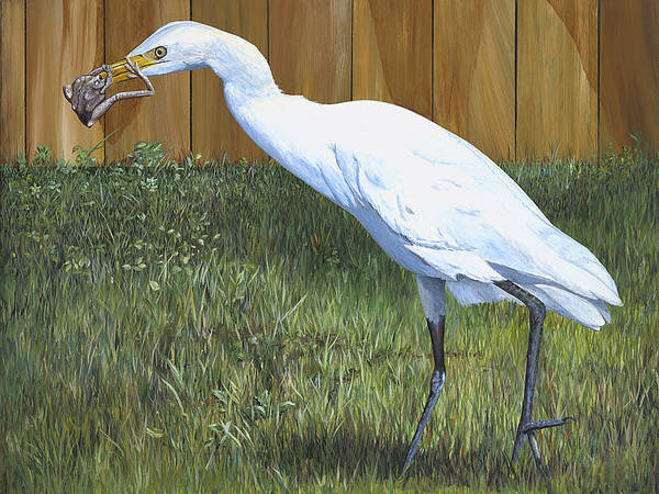 Cattle Egret Print featuring the painting Eye To Eye by AnnaJo Vahle