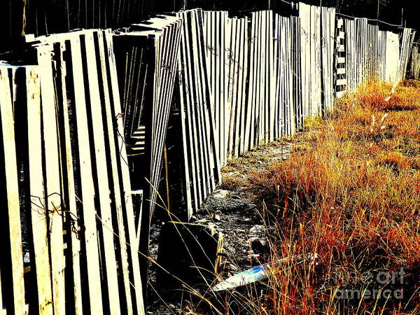 Fence Print featuring the photograph Fence Abstract by Joe Jake Pratt